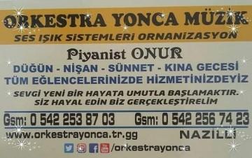 NAZİLLİ MERKEZDE ORKESTRALAR NAZİLLİ ÇEVRESİNDE AT, 500,00 ₺, Türkiye, Aydın, Nazilli